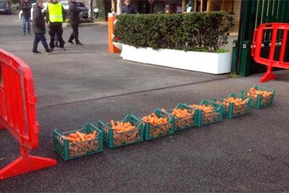 Фанаты «Ромы» оскорбили футболистов морковью